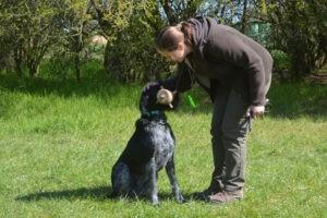 Hundekurs Impressionen
